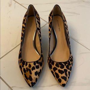 New Gianni Bini Leopard Kitten Heels